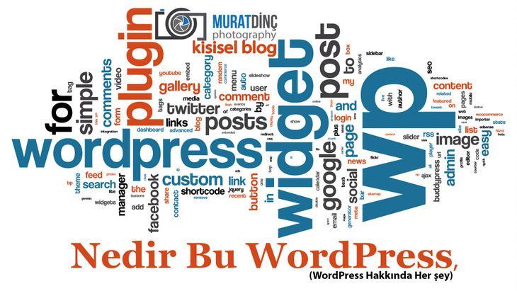 Nedir Bu WordPress, (WordPress Hakkında Her şey)